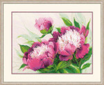 "RL100039 Riolis Cross Stitch Kit Pink Peonies 16"" x 12""; Aida; 14ct"
