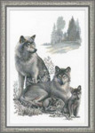 "RL100021  Riolis Cross Stitch Kit Wolves 16"" x 24""; Aida; 14ct"
