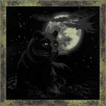 "RL100010  Riolis Cross Stitch Kit Full Moon 19"" x 19""; Aida; 14ct"