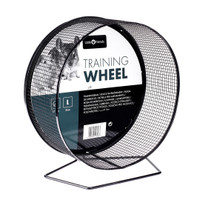 Little Friends Small Animal Exercise/Training Wheel, 27 cm