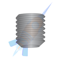 1/4-20 x 1/2 Coarse Thread Socket Set Screw Flat Point Plain Imported