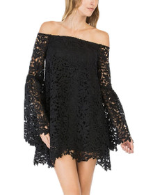 Ivy Lace Long Bell Sleeve Dress