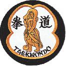 TKD Warrior Patch