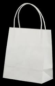 Medium Paper Carry Bags with Twist Handle - White