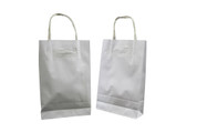 Small Paper Carry Bags with Twist Handle - White