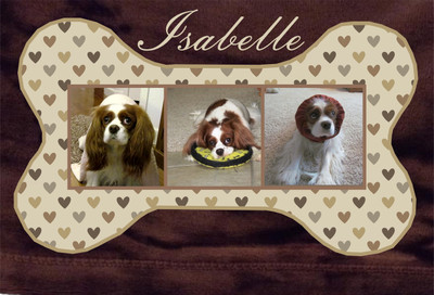 Blankets - Plush micro fleece (30 x 40), imprinted bone and photos (6 designs - personalized)
