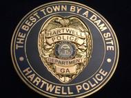 HARTWELL POLICE GEORGIA COIN