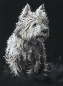 West Highland Terrier artwork by Kay Johns