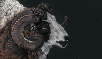 Jacob Ram artwork by Kay Johns