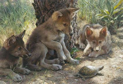 Artwork by Carl Brenders