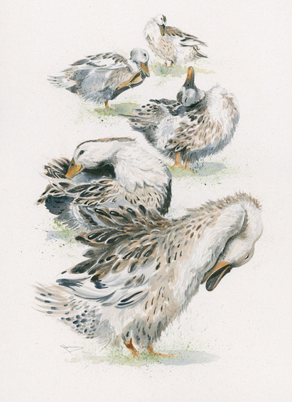 Hand embellished (duck) artwork by Kay Johns