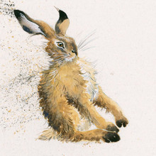 Hare painting by Kay Johns