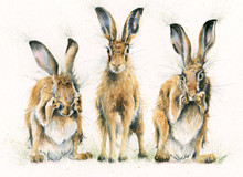 Hare painting bu Kay Johns