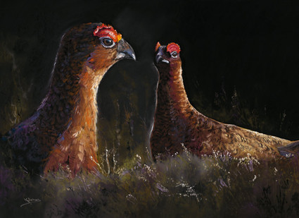Red Grouse Artwork by Kay Johns