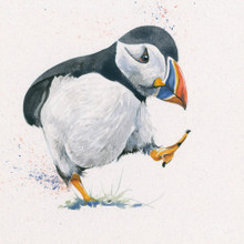 Puffin artwork by Kay Johns