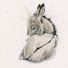 Donkey artwork by Kay Johns