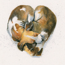 Fox Hound puppy artwork by Kay Johns