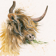 Highland cattle, hand embellished limited edition print by Kay Johns