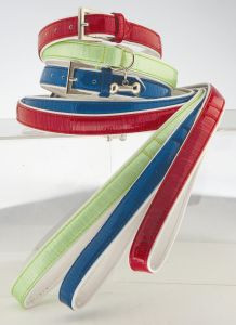 "Max & Bella Cool Bright Dog Collar - Large - 6/8"" x 21"" (2cm x 55cm)"
