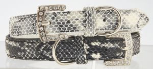"Max & Bella Wild Snake Dog Collar - Medium - 6/8"" x 18"" (2cm x 45cm)"