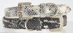 "Max & Bella Wild Snake Dog Collar - 1"" x 25"" (2.5cm x 65cm)"