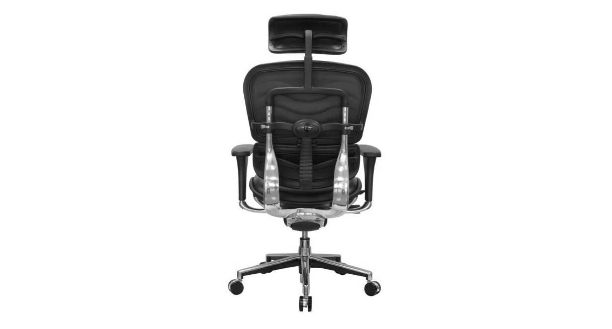 Shop Raynor Ergohuman ChairsLeather with Headrest LE9ERG