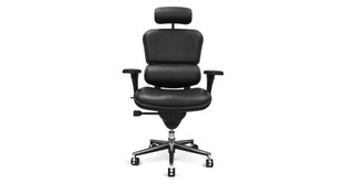The Raynor Ergohuman Leather Chair with Headrest is available with a padded black leather seat, seat back, and headrest
