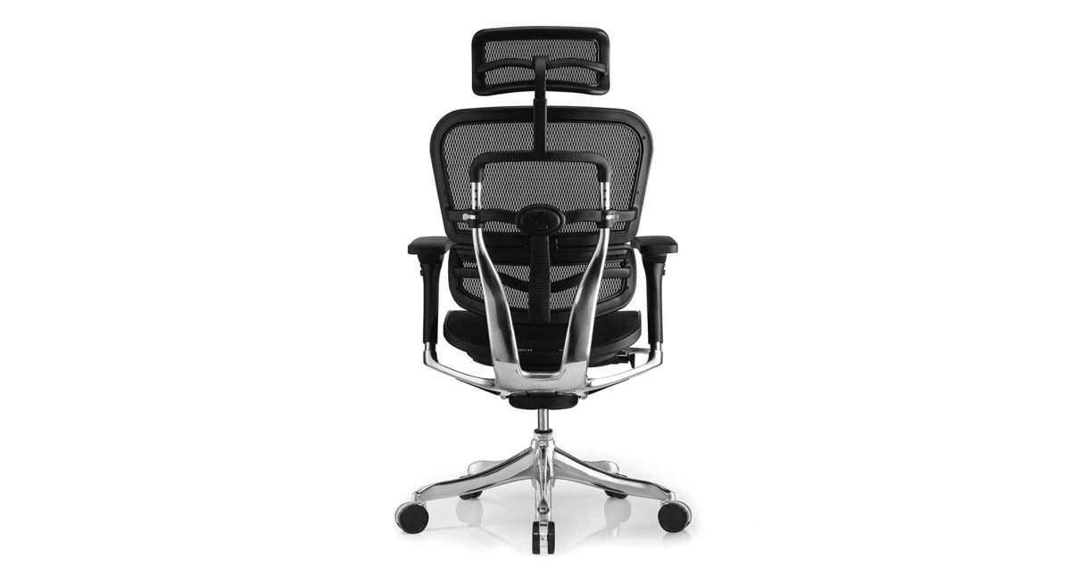 Shop Raynor Ergo Elite Chair with Headrest ME22ERGLT