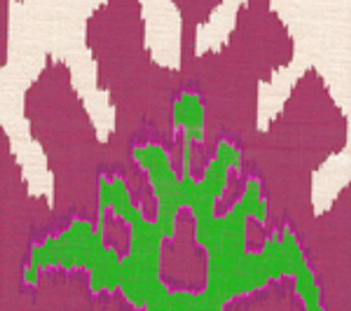 Quadrille Kazak Magenta Lime on Tint