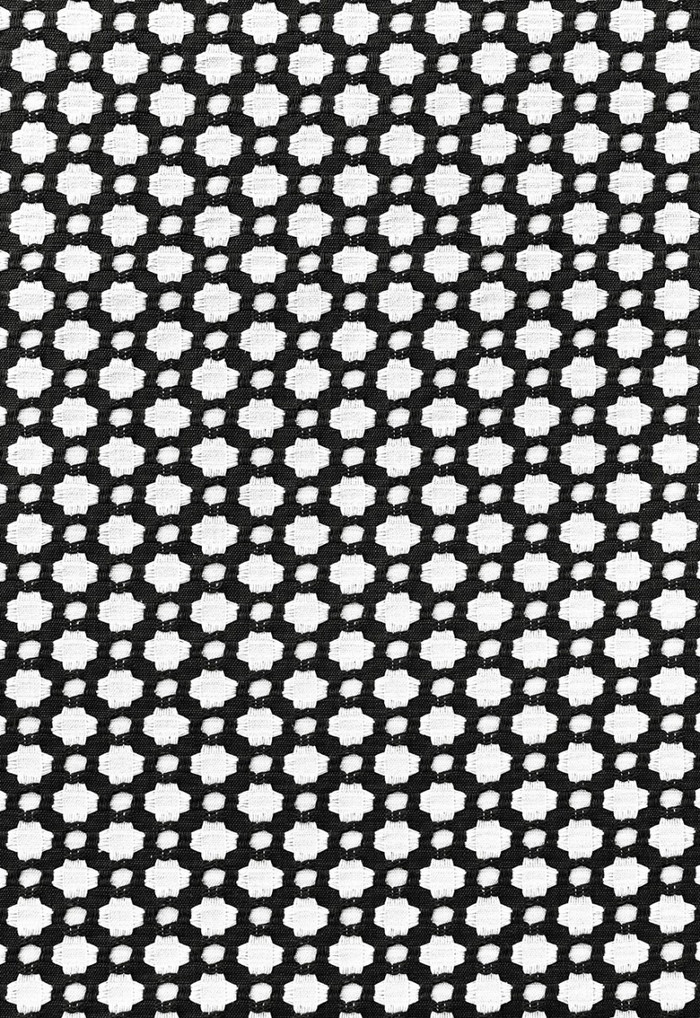 Schumacher Celerie Kemble Betwixt 62683 Black White