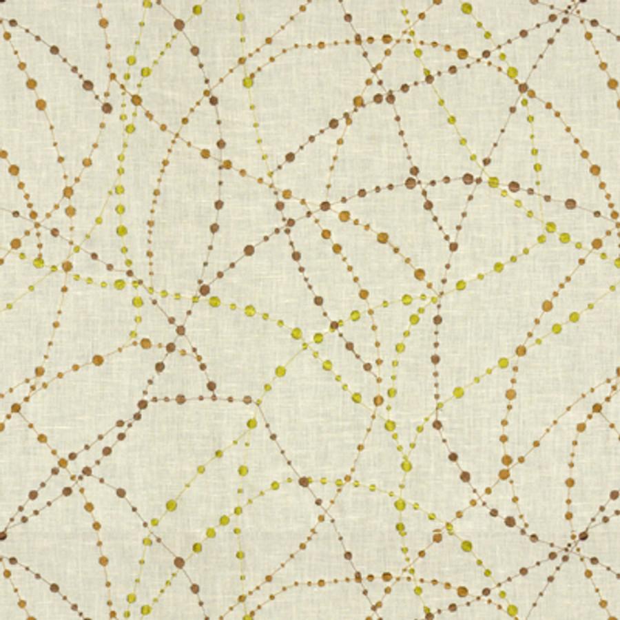 Star Gazer in Olive