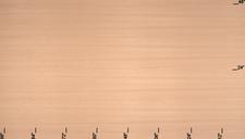 Architectural Grade Rift Red Oak Veneer