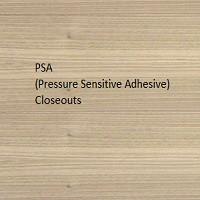 PSA Closeouts