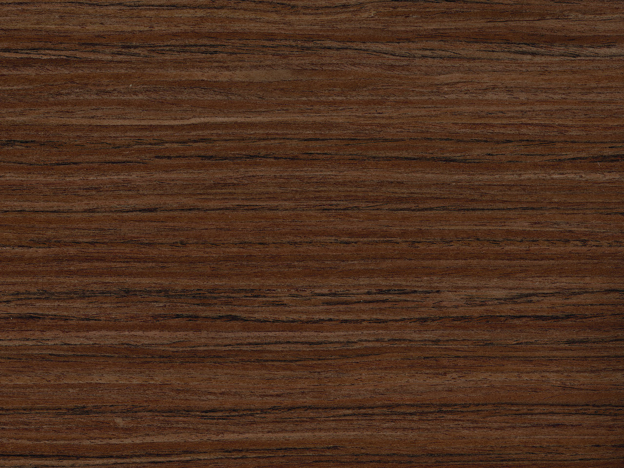 Reconstituted teak wood veneer qtr tk s