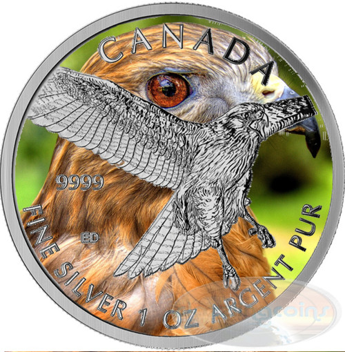 Red Tailed Hawk 1 oz Silver .9999 Color $5 Canada 2015