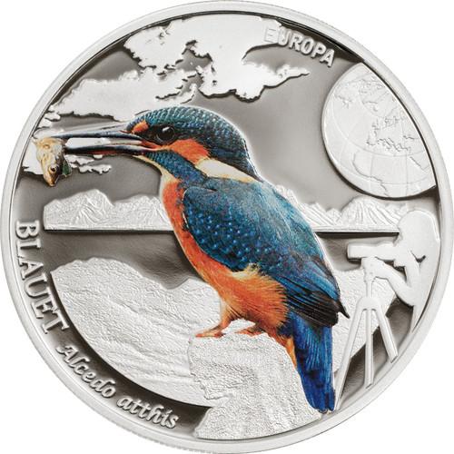 European Kingfisher -5 Dinners Andorra 2014