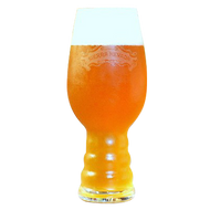 Sierra Nevada IPA Beer Glass