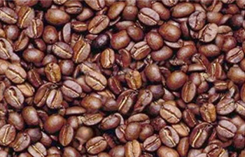coffeetest.jpg