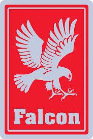 falcon.jpeg