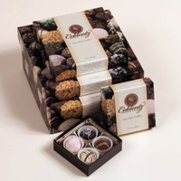 Chocolate Truffles - Assortment