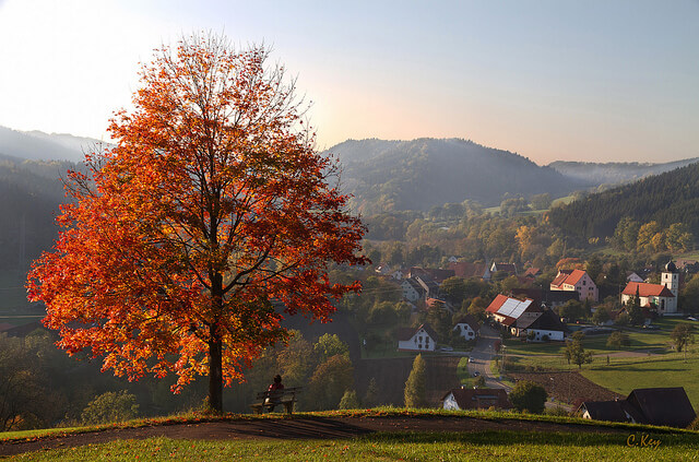 German black forest region tourism
