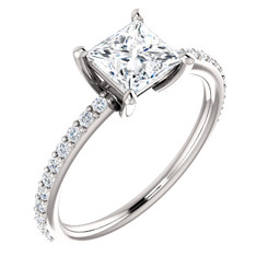 The Luna Ring NEO Moissanite 1CT Center Princess Cut Engagement Wedding Ring with Diamond Accents