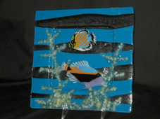 Square Glass plate with Humu Fish - 10 inch