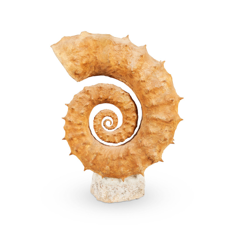 Ammonite Fossil Sculpture Large