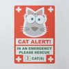CAT Home Alone Window Sticker - Example Behind Class
