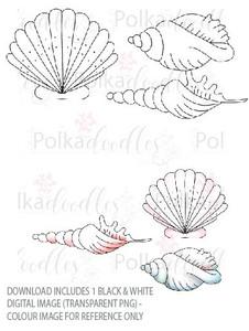 Winnie Starfish/Sandcastles - Seashells DOWNLOAD