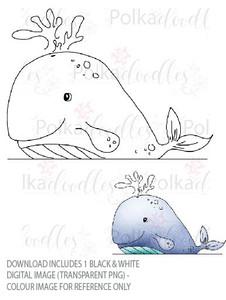 Winnie Starfish/Sandcastles - Whale DOWNLOAD