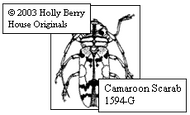 Camaroon Scarab