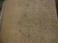 Hardees Manual Scrapbook Paper