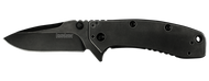 "Kershaw Cryo II 1556BW Assisted Opening Folding Knife, Blackwashed 3.25"" Plain Edge Blade, Blackwashed Stainless Steel Handle"